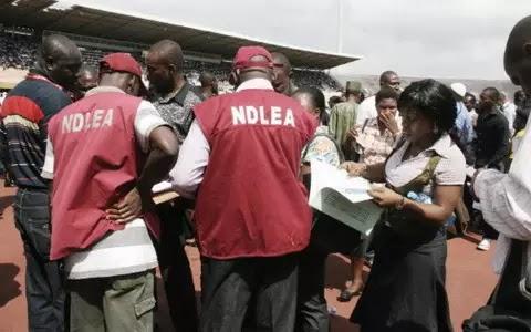 NDLEA arrests 85 suspects, seizes 55kg drugs in Ebonyi